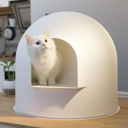 caisse pour chat