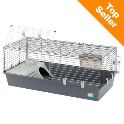 cochon d inde cage