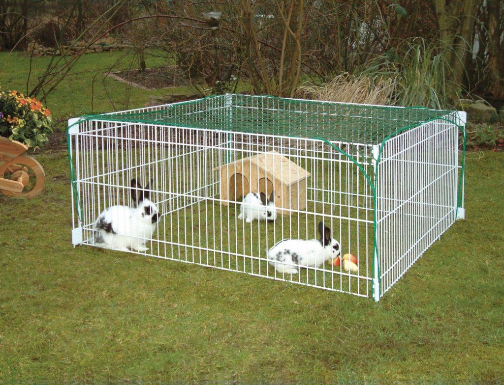 enclos pour lapin nain