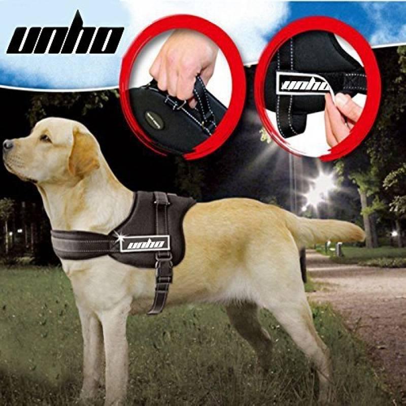 harnais chien personnalisé
