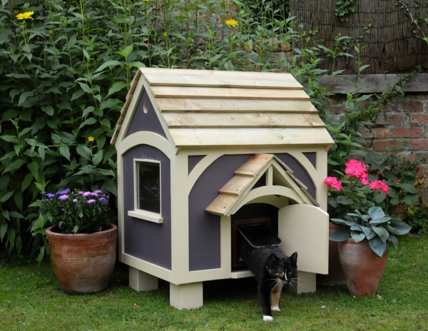 maison chat exterieur