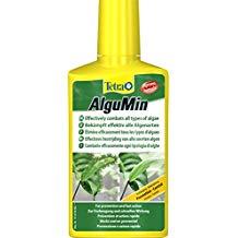 produit anti algue aquarium